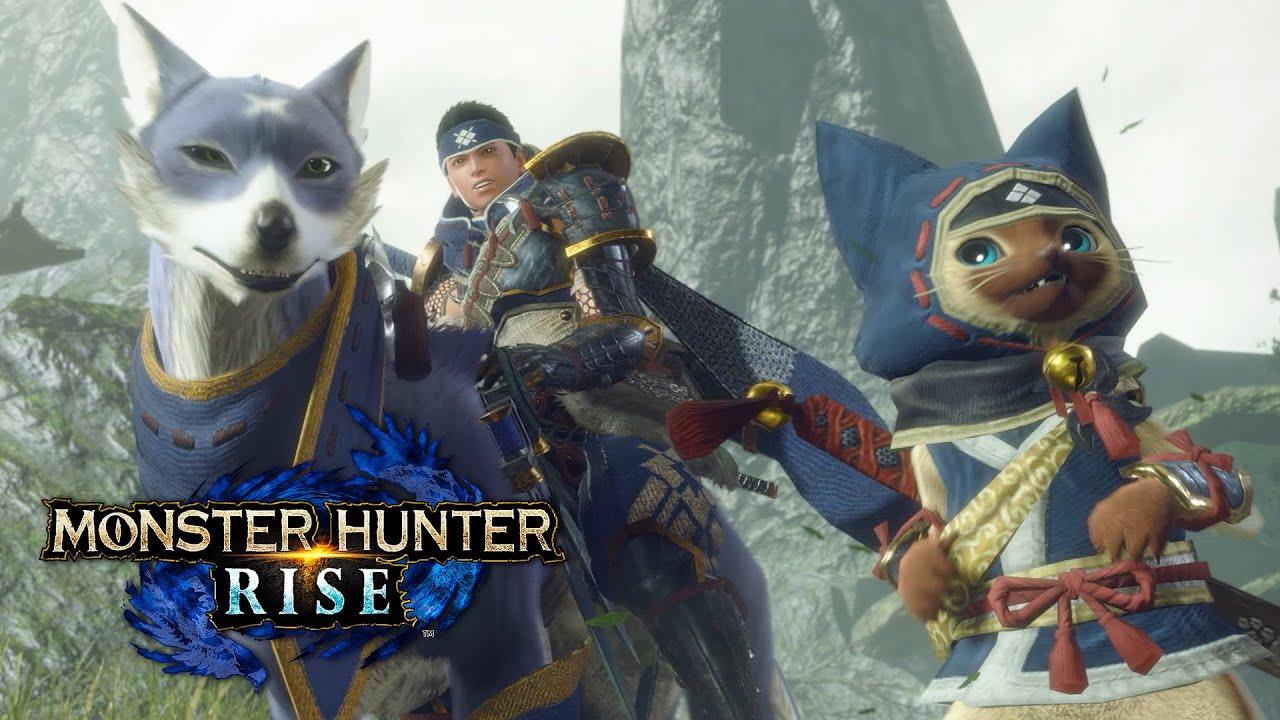 monster hunter rise fps resolution
